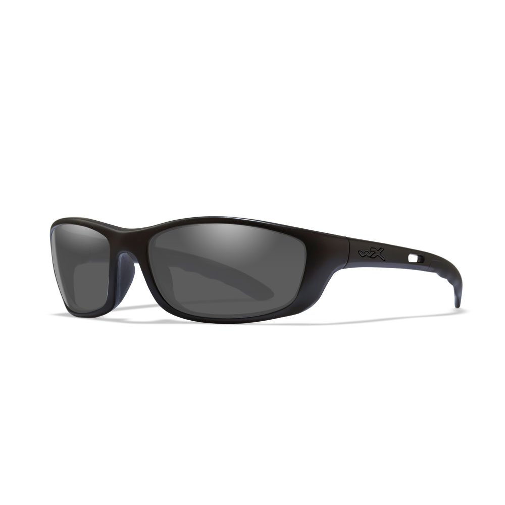 Wiley X P-17 Sunglasses in Matte Black WX-P-17M