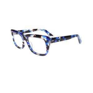 Geek Stellar Eyeglasses in Blue/Demi LBI-GK-STELLAR-BLD